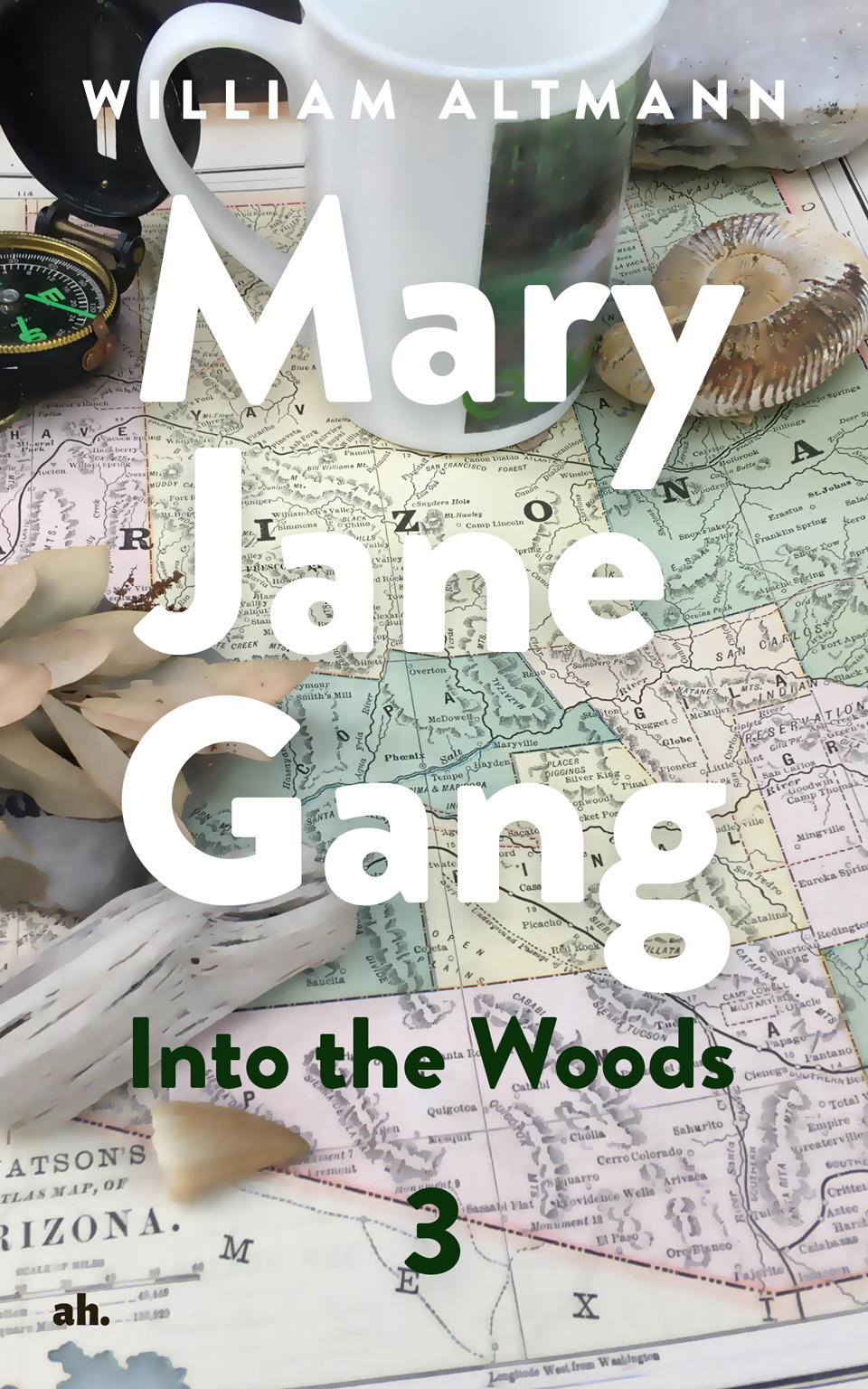 Mary Jane Gang 3